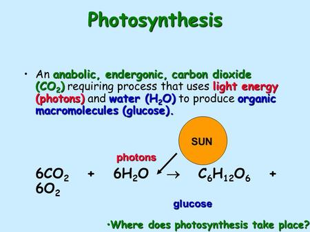 Photosynthesis anabolic, endergonic, carbon dioxide (CO 2 )light energy (photons)water (H 2 O)organic macromolecules (glucose).An anabolic, endergonic,