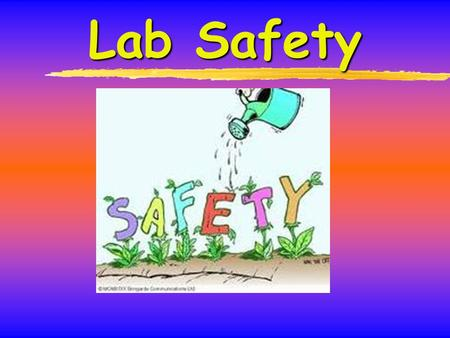 Lab Safety. Introduction 1.A chemical lab is potentially hazardous environment 2.Accident and injury can happen anytime 3.Lab safety is everyone's responsibility.
