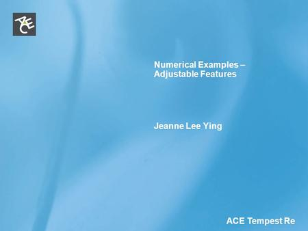 ACE Tempest Re Numerical Examples – Adjustable Features Jeanne Lee Ying.
