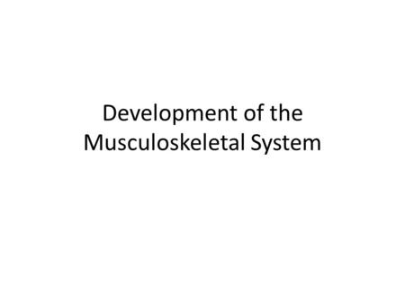 Development of the Musculoskeletal System