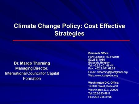 Climate Change Policy: Cost Effective Strategies Dr. Margo Thorning Managing Director, International Council for Capital Formation Brussels Office: Park.
