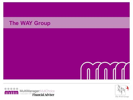 The WAY Group. WAY and the use of MM portfolio funds Paul Wilcox Chairman and Technical Director.