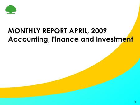 1 MONTHLY REPORT APRIL, 2009 Accounting, Finance and Investment.