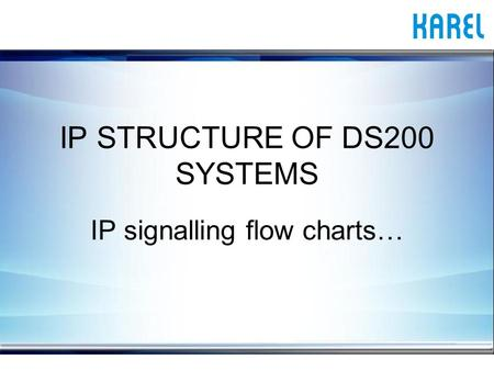 IP STRUCTURE OF DS200 SYSTEMS