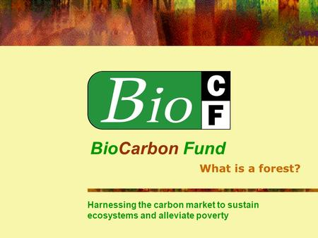 BioCarbon Fund Harnessing the carbon market to sustain ecosystems and alleviate poverty What is a forest?