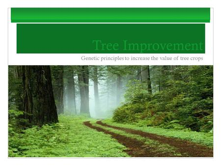 Tree Improvement Genetic principles to increase the value of tree crops.