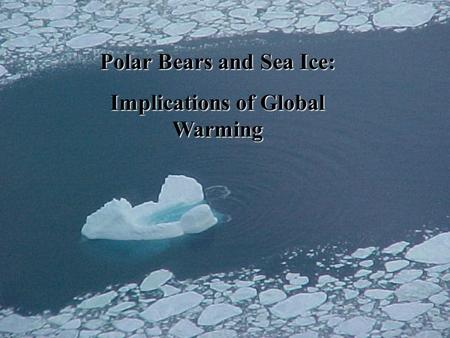 Polar Bears and Sea Ice: Implications of Global Warming.