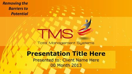 Removing the Barriers to Potential Presentation Title Here Presented to: Client Name Here 00 Month 2013.
