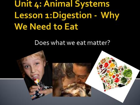 Does what we eat matter?.  Why do we need to eat?
