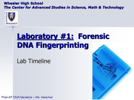 Laboratory #1: Forensic DNA Fingerprinting Lab Timeline Wheeler High School The Center for Advanced Studies in Science, Math & Technology Post-AP DNA/Genetics.