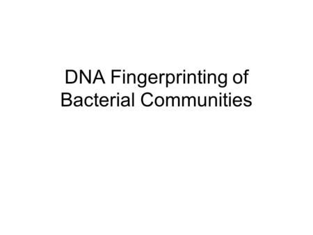DNA Fingerprinting of Bacterial Communities. Overview Targets gene for ribosomal RNA (16S rDNA) Make many DNA copies of the gene for the entire community.