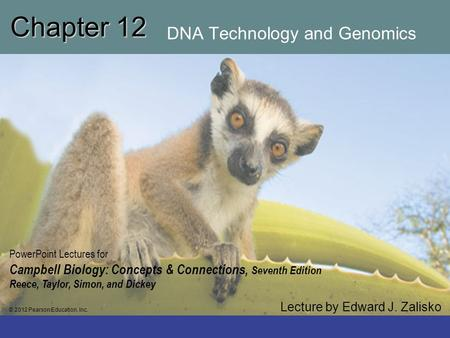 Chapter 12 DNA Technology and Genomics