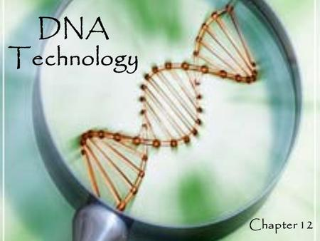 DNA Technology Chapter 12. Applications of Biotechnology Biotechnology: The use of organisms to perform practical tasks for human use. – DNA Technology: