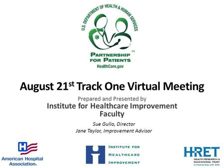 August 21 st Track One Virtual Meeting Prepared and Presented by Institute for Healthcare Improvement Faculty Sue Gullo, Director Jane Taylor, Improvement.