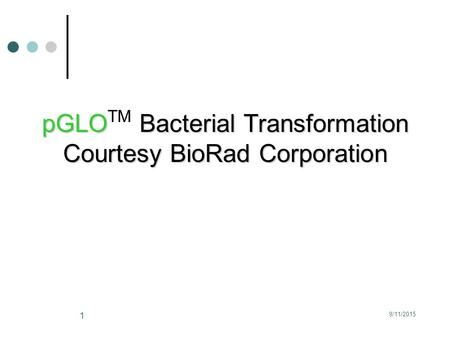 9/11/2015 1 pGLO Bacterial Transformation pGLO TM Bacterial Transformation Courtesy BioRad Corporation.
