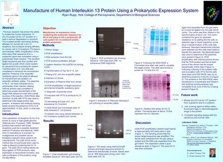 Manufacture of Human Interleukin 13 Protein Using a Prokaryotic Expression System Ryan Rupp, York College of Pennsylvania, Department of Biological Sciences.