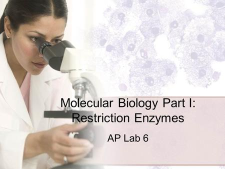 Molecular Biology Part I: Restriction Enzymes AP Lab 6.