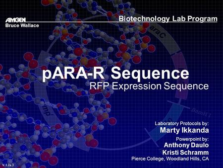 PARA-R Sequence RFP Expression Sequence Biotechnology Lab Program Laboratory Protocols by: Marty Ikkanda Powerpoint by: Anthony Daulo Kristi Schramm Pierce.