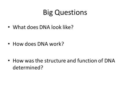 Big Questions What does DNA look like? How does DNA work? How was the structure and function of DNA determined?