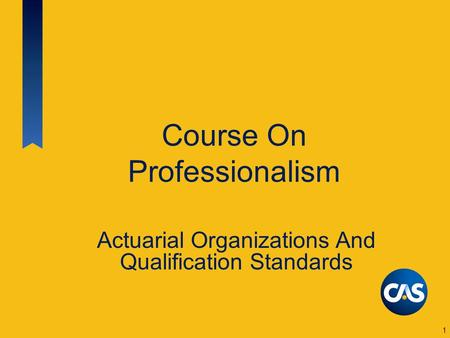 Course On Professionalism Actuarial Organizations And Qualification Standards 1.