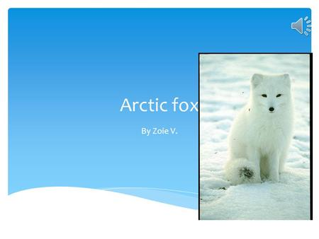 Arctic fox By Zoie V.  An Arctic fox is a mammal because it has at least one hair on its body. An Arctic Fox Is A Mammal.