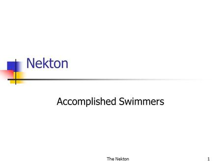 The Nekton1 Nekton Accomplished Swimmers. The Nekton 2 What are Nektonic Animals? Organisms that have developed powers of locomotion; capable of movement.