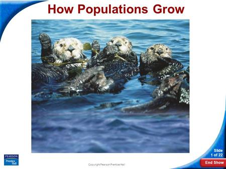End Show Slide 1 of 22 Copyright Pearson Prentice Hall How Populations Grow.