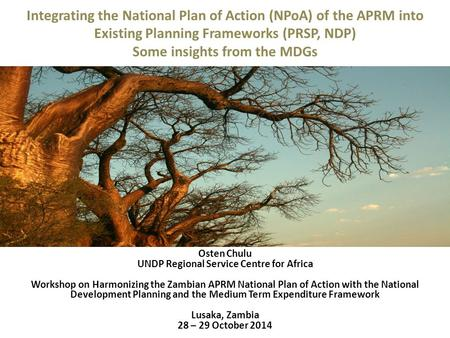 Integrating the National Plan of Action (NPoA) of the APRM into Existing Planning Frameworks (PRSP, NDP) Some insights from the MDGs Osten Chulu UNDP Regional.