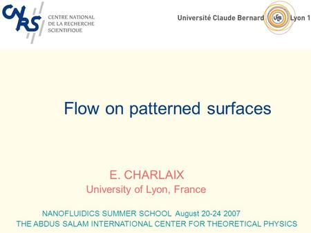 Flow on patterned surfaces E. CHARLAIX University of Lyon, France NANOFLUIDICS SUMMER SCHOOL August 20-24 2007 THE ABDUS SALAM INTERNATIONAL CENTER FOR.