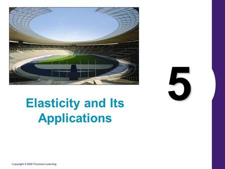 Copyright © 2006 Thomson Learning 5 Elasticity and Its Applications.
