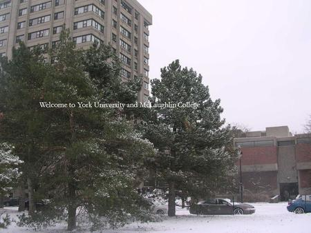 Welcome to York University and McLaughlin College.