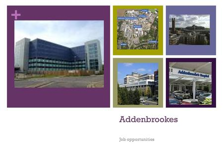 + Addenbrookes Job opportunities. + Our day On the 6 th of February we had the opportunity to spend a day at Addenbrookes hospital discovering the non.