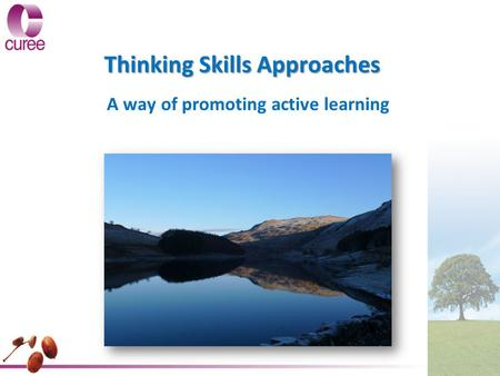 Thinking Skills Approaches A way of promoting active learning.