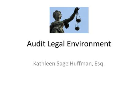 Audit Legal Environment