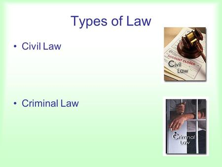 Types of Law Civil Law Criminal Law. Some Terms Litigants –Plaintiff –Defendant Standing Class Action Suits Interest Groups –ACLU, NAACP –Amicus Curiae.