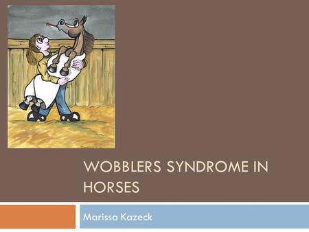 Wobblers Syndrome in Horses