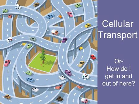 Cellular Transport Or- How do I get in and out of here?