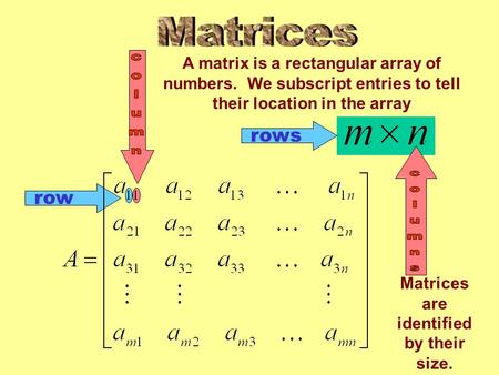 Row rows A matrix is a rectangular array of numbers. We subscript entries to tell their location in the array Matrices are identified by their size.