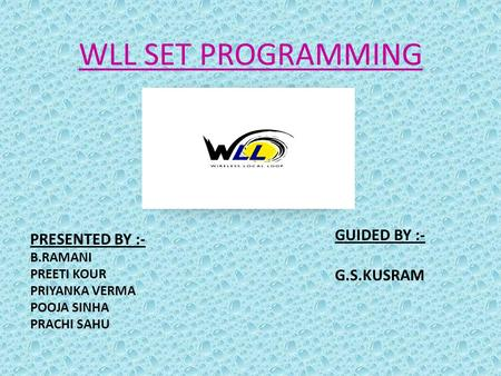 WLL SET PROGRAMMING GUIDED BY :- G.S.KUSRAM PRESENTED BY :- B.RAMANI
