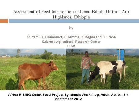 Assessment of Feed Intervention in Lemu Bilbilo District, Arsi Highlands, Ethiopia by M. Yami, T. T.haimanot, E. Lemma, B. Begna and T. Etana Kulumsa Agricultural.