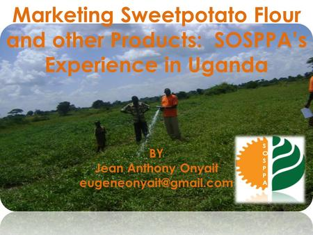 Marketing Sweetpotato Flour and other Products: SOSPPA's Experience in Uganda BY Jean Anthony Onyait