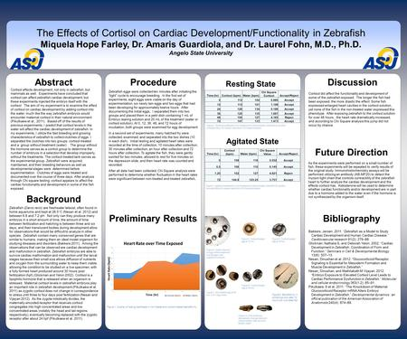 Www.postersession.com Abstract Cortisol affects development, not only in zebrafish, but mammals as well. Experiments have concluded that cortisol can affect.
