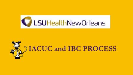 IACUC and IBC PROCESS. Office of Research Services Resource Center Building Room 206504-568-4970 Kenneth Kratz, PhD –Director Staff: Nicole Barron – Pre-award.