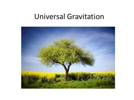Universal Gravitation. Projectile Motion revisited How do the paths of a bullet fired from a gun horizontally and a baseball thrown horizontally compare?
