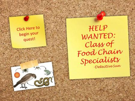 HELP WANTED: Class of Food Chain Specialists -Detective Sun Click Here to begin your quest!
