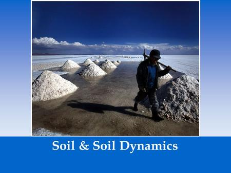 Soil & Soil Dynamics.  Rock cycle- the constant formation and destruction of rock. The Rock cycle is the slowest of all cycles. The Rock Cycle.