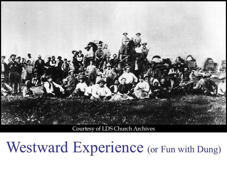 Westward Experience (or Fun with Dung). #1 What were early frisbees made of? Buffalo Dung.