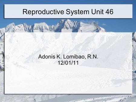 1 Reproductive System Unit 46 Adonis K. Lomibao, R.N. 12/01/11.