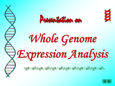 Whole Genome Expression Analysis. In this presentation…… Part 1 – Gene Expression Microarray Data Part 2 – Global Expression & Sequence Data Analysis.