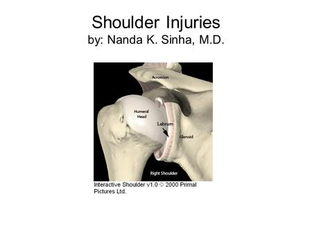 Shoulder Injuries by: Nanda K. Sinha, M.D.. Surface Anatomy.